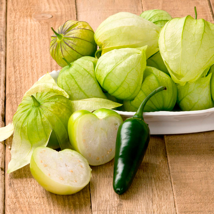 tomatillo physalis phyladelphica